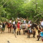 "Horseback Riding in Tobago with ""Being With Horses"""